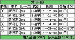 2013年10月27日新潟9R28000円 keiba.jpg