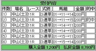 2013年12月7日中山11R4390円 keiba.jpg