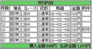 2013年12月7日阪神9R1070円 keiba.jpg