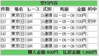 2013年2月10日東京9R1800円3連複.jpg