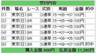 2013年2月17日東京9R11390円.jpg