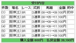2013年3月30日阪神8R39190円.jpg