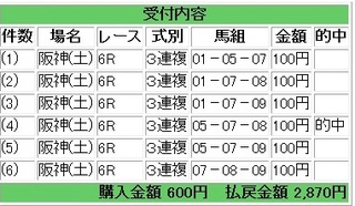 2013年4月13日阪神6R2870円3連複.jpg