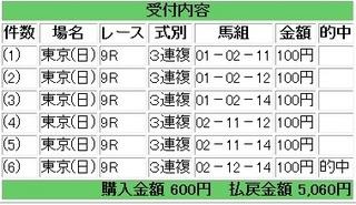 2013年4月28日東京9R5060円3連複.jpg