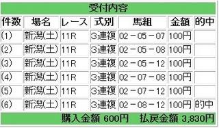 2013年5月11日新潟11R3830円3連複.jpg