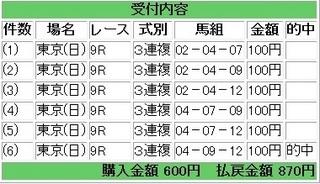 2013年6月2日東京9R870円3連複.jpg