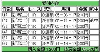 2013年8月10日新潟11R32760円3連複.jpg