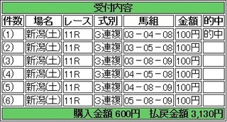 2013年8月17日新潟11R3130円3連複.jpg