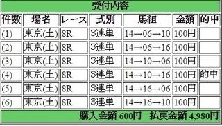 2015年6月6日東京8R4980円3連単 keiba.jpg