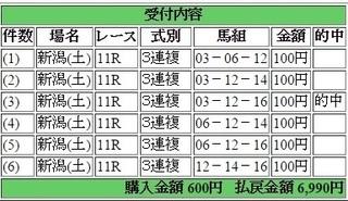 2015年9月5日新潟11R6990円3連複 keiba.jpg