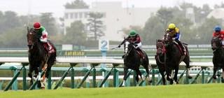 神戸新聞杯2020-1.jpg
